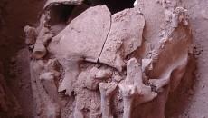 Um grupo de arqueólogos da USP encontrou em uma caverna da região […]