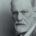 Historiadorafrancesa escreveu deforma crítica abiografiado pai da psicanálise, removendo mitos, lendas e […]
